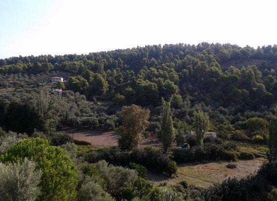 Xanthi Studios : Another view