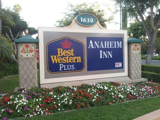 Best Western Plus Anaheim Inn: The Hotel