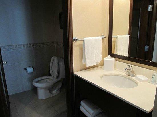 Hampton Inn & Suites Mexico City - Centro Historico : Bathroom