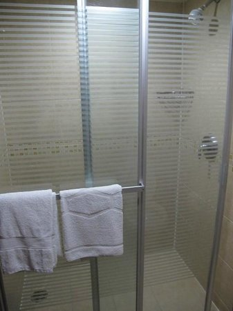Hampton Inn & Suites Mexico City - Centro Historico : Shower