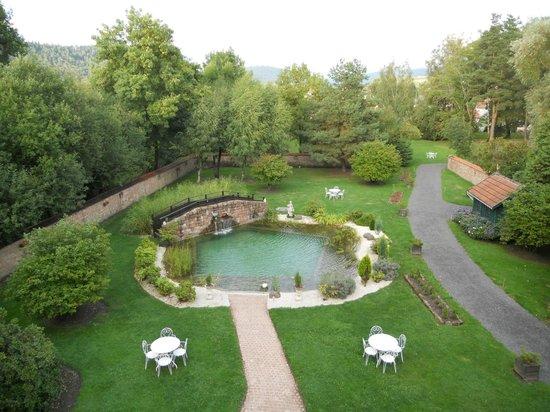 Chambre bouleau picture of les jardins d 39 aika raon l - Prix d une piscine naturelle ...