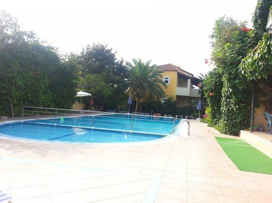 Mayflower Apartments & Studios: pool area