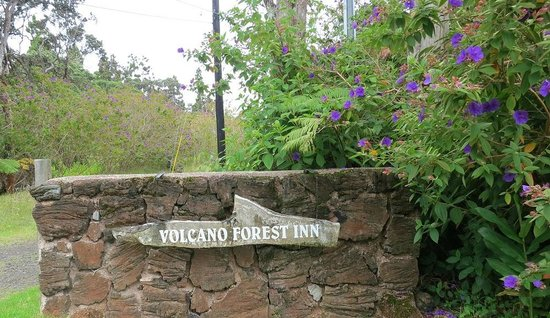 Volcano Forest Inn: Entrance from Road