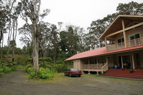 Volcano Forest Inn: Inn