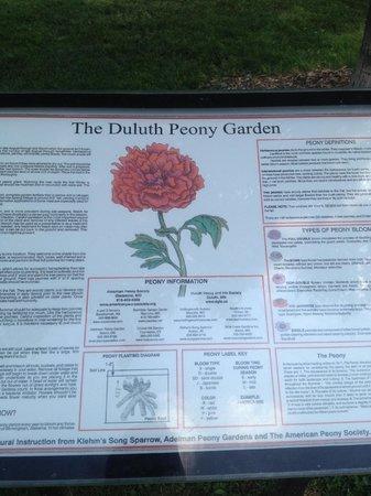 Leif Erickson Park & Rose Garden: Description of rose gardens