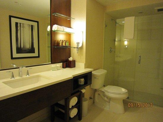 Milwaukee Marriott Downtown : bathroom