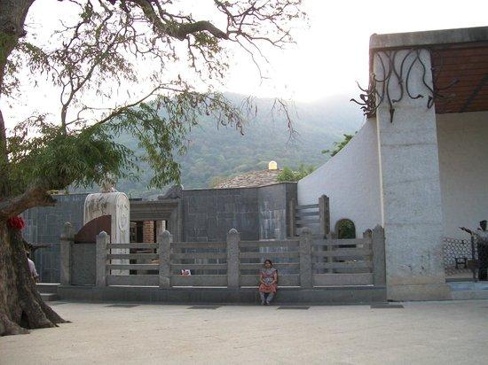 Dhyanalinga Temple: scenic beauty