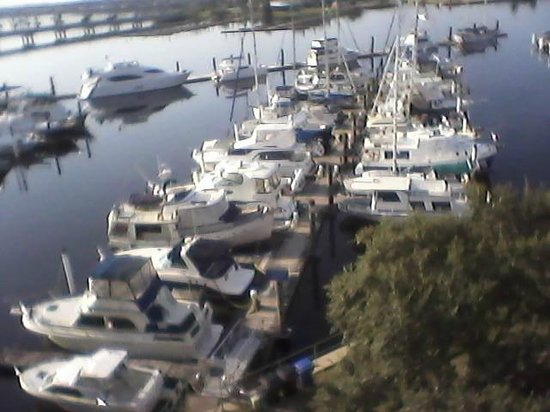 DoubleTree by Hilton Hotel New Bern Riverfront: enjoyed the view of the marina and all the boats