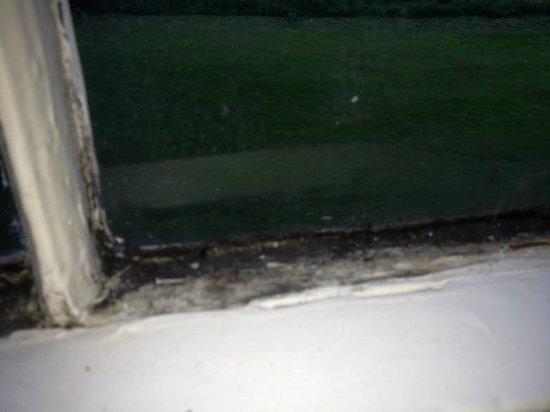 Hall Garth Hotel & Country Club: bedroom 1 windows