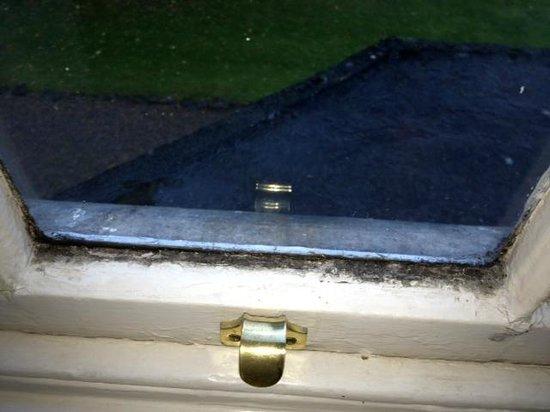 Hall Garth Golf And Country Club: bedroom 1 windows