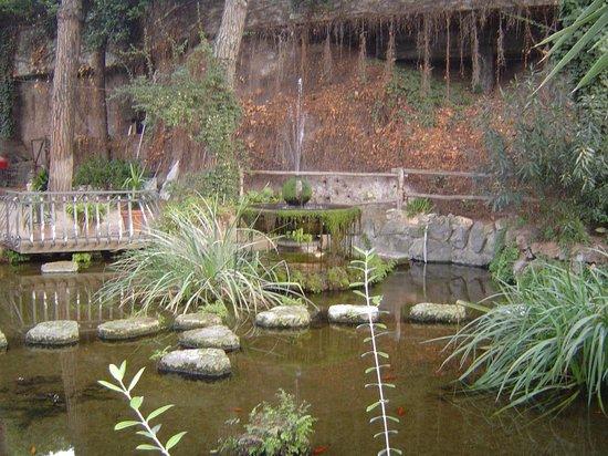 Hotel Shangri La Corsetti: water arrangement in the hotel