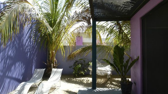 The Hotelito : Private garden