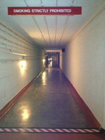 VISIT THE BUNKER - RAF Holmpton: ENTRANCE TUNNEL (AFTER TWO FLIGHTS OF STAIRS)