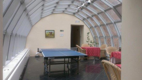 Chateau de Limont: Salle de jeu