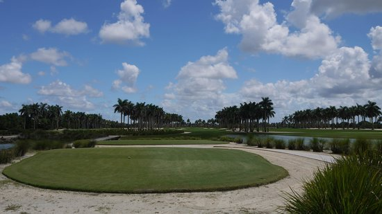 Doral Resort -  Great White Golf Course: The first tee