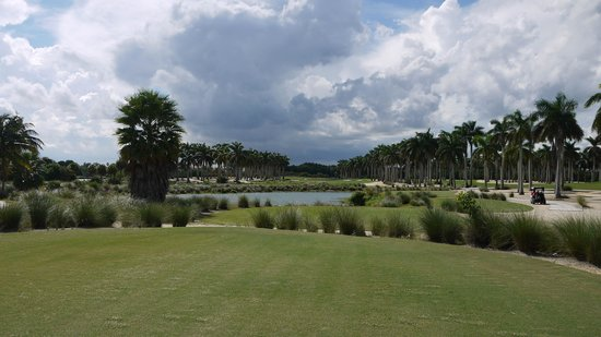 Doral Resort -  Great White Golf Course: The 18th tee