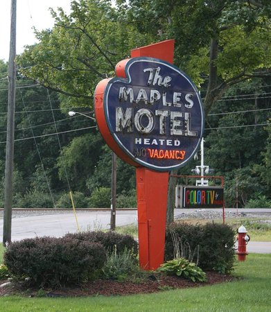 Maples Motel: The truly antique sign!