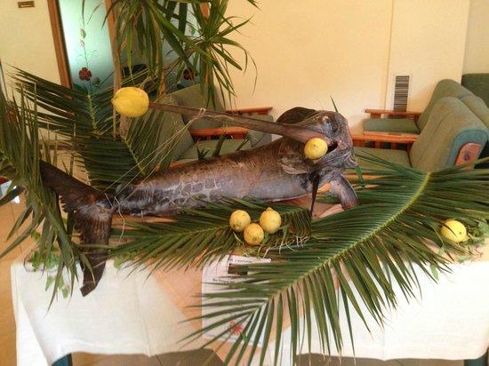 Hotel Villa Hibiscus: pesce spada