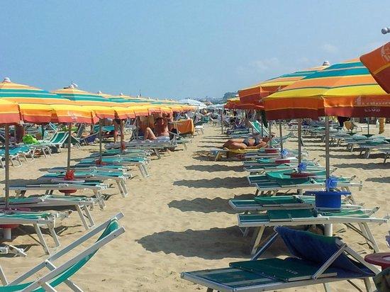 Club Arianna Hotel Residence: spiaggia centro servizi
