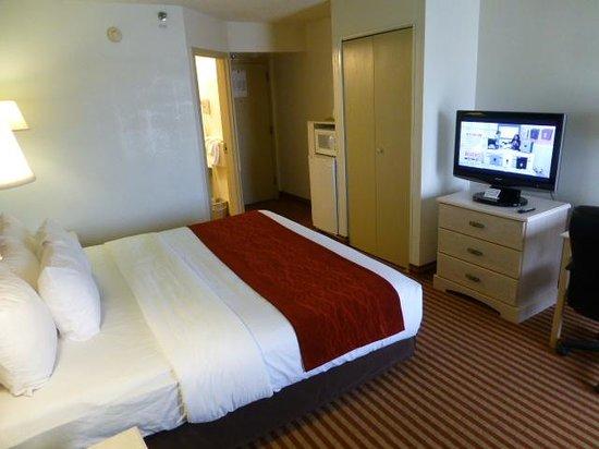 Comfort Inn - Pensacola / N Davis Hwy: King size bed