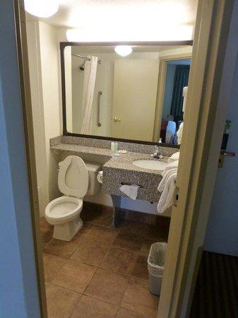 Comfort Inn - Pensacola / N Davis Hwy: Bath