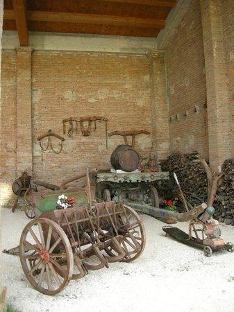 Agriturismo Rio Manzolo: Vecchi strumenti agricoli nel fienile