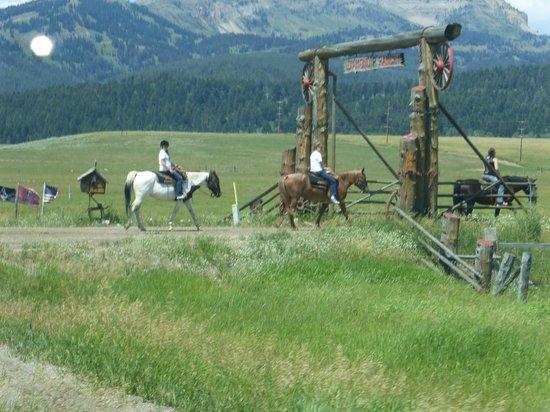 The Diamond P Ranch: amazing country