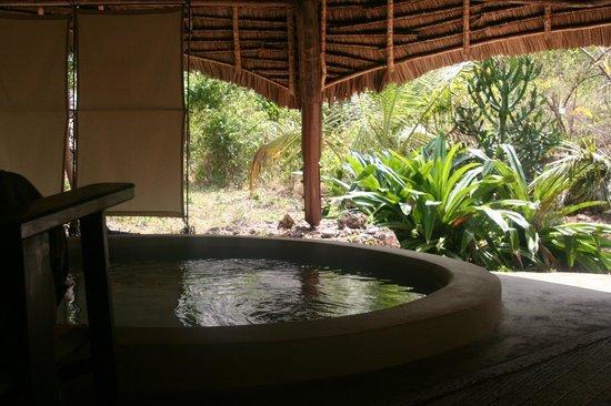 Unguja Lodge: Private plunge pool