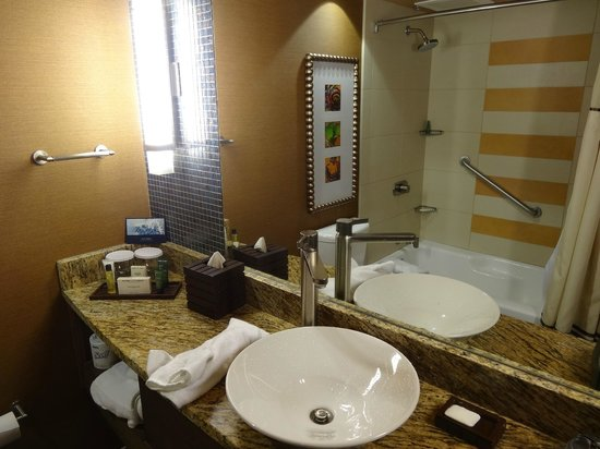 My room bathroom mirror shot picture of hilton for Bathroom mirrors san antonio