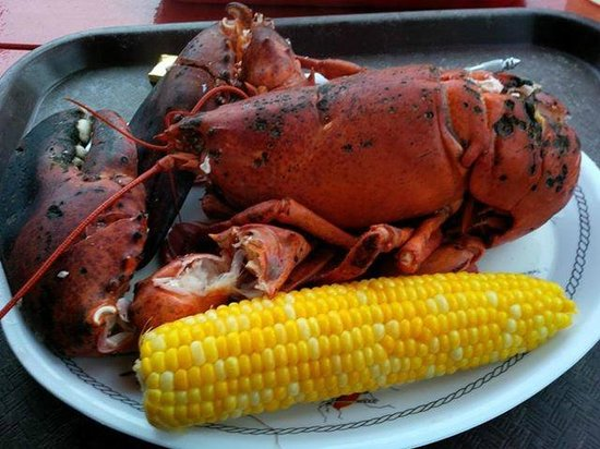 The Lobster Dock: Dinner -- a four pound lobster!