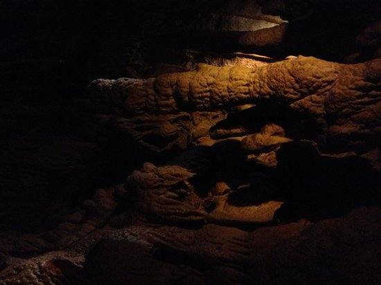 Mammoth Cave National Park: Mammoth Cave