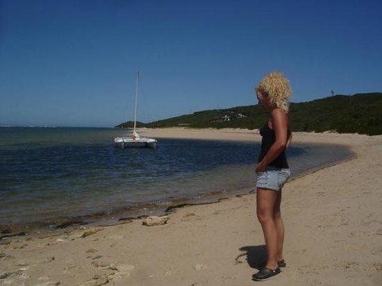 Mudlark River Front Lodge: Local beach