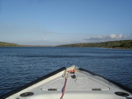 Mudlark River Front Lodge: Heading back