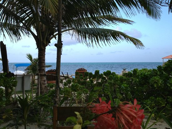 Aji Tapa Bar & Restaurant: View of ocean from our table