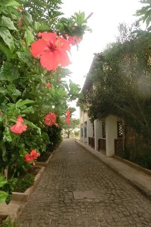 Porto Antigo Residence : kleine straatjes waaraan de studio's zich bevinden