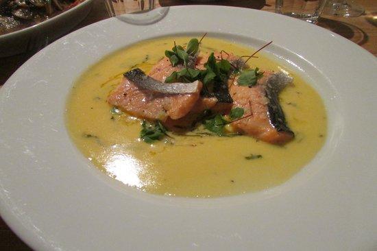 St Petroc's Bistro: Salmon in Morel Sauce (caked in rock salt)