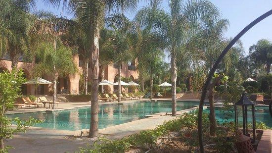 Palais Aziza & Spa: The pool