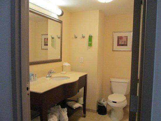 Hampton Inn Virginia Beach-Oceanfront South: bathroom