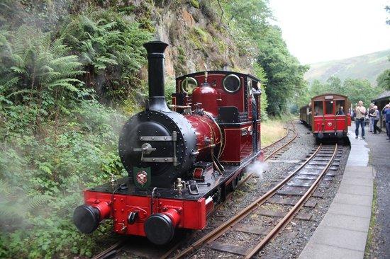 Talyllyn Railway : Lovely little engine puff puff