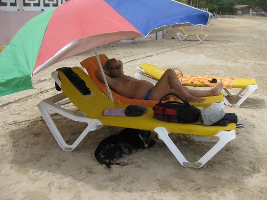 St. Lucian by Rex Resorts: Man and Dog shelter from the sun