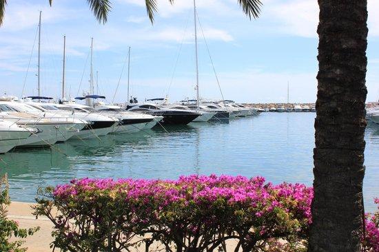 Salles Hotel Marina Portals: Набережная Portals Nous