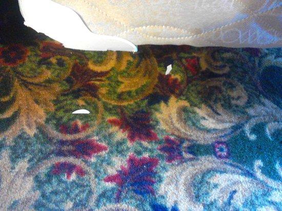 Fairview Beachfront Inn & Waterpark: plastic by bed. assume it was broken off the mattress box spring.