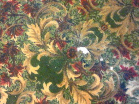 Fairview Beachfront Inn & Waterpark: disgusting dirty ripped carpet.