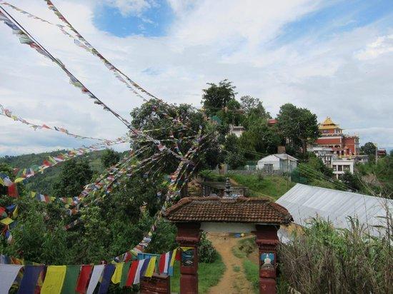 Heart of Bhaktapur Guest House: Namo Buddha