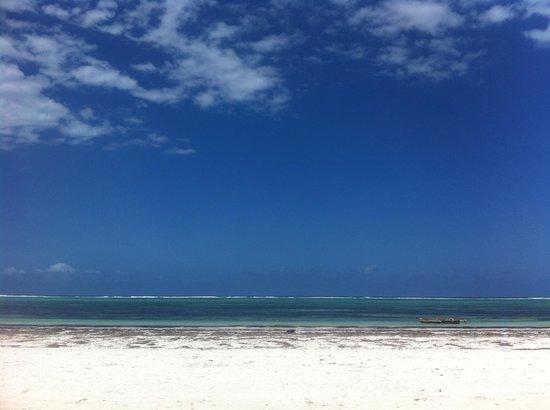 Matemwe Bandas Boutique Hotel, Zanzibar: The view from my room