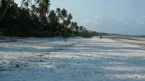 Matemwe Bandas Boutique Hotel, Zanzibar: The beach in front of the hotel