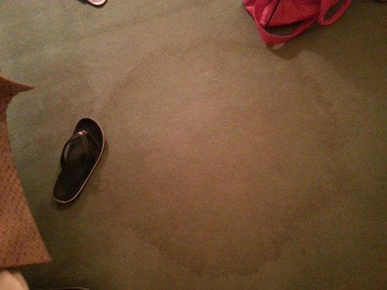 Best Western Westley Hotel: stained floor