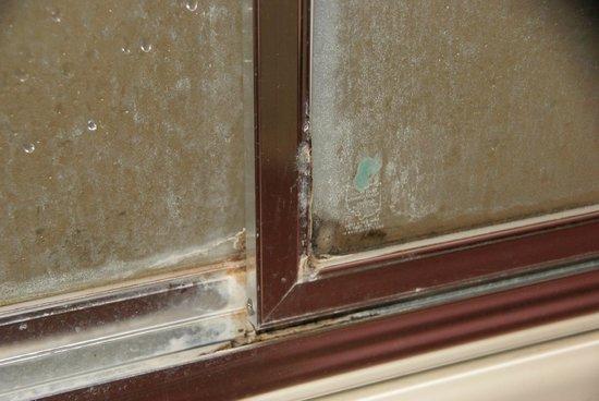 Urbana Inn & Suites: mold/mildew on shower door
