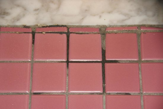 Urbana Inn & Suites : mold/mildew on tile outside walk in shower