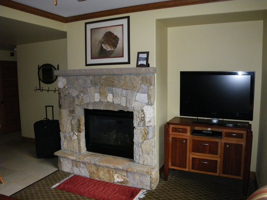 Valdoro Mountain Lodge : Fireplace in living room